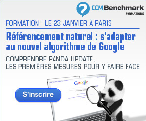 formation panda update référencement naturel google ccm benchmark