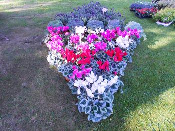 Fleurir son jardin pour le mettre en valeur for Fleurir son jardin